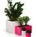 Oživte váš domov prostřednictvím barevných a zajímavých keramických květináčů